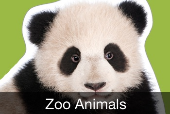 Touch, Look, Listen - Zoo Animals, a 3D pop-up early learning kids app by StoryToys.