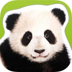 Zoo_Animals